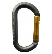 Begbie Oval Carabiner